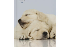 Agenda 2021 my favourite friends dogs